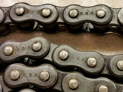 BSA Primary Chain 800x600